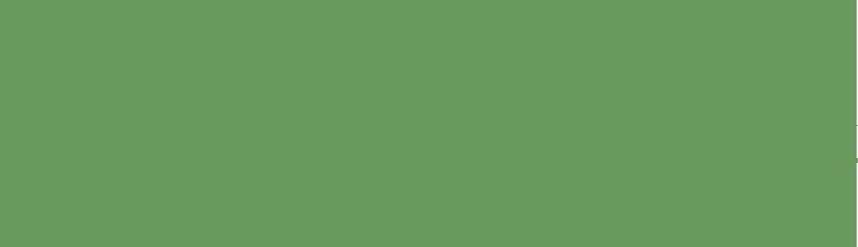 NVRG_logo_groen
